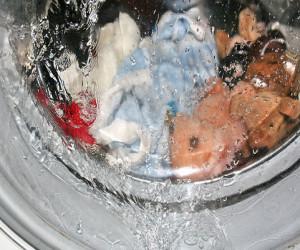 Installazione lavatrice e manutenzione for Manutenzione lavatrice